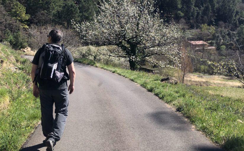 Défi de la semaine : Marcher au moins 30 minutes par jour