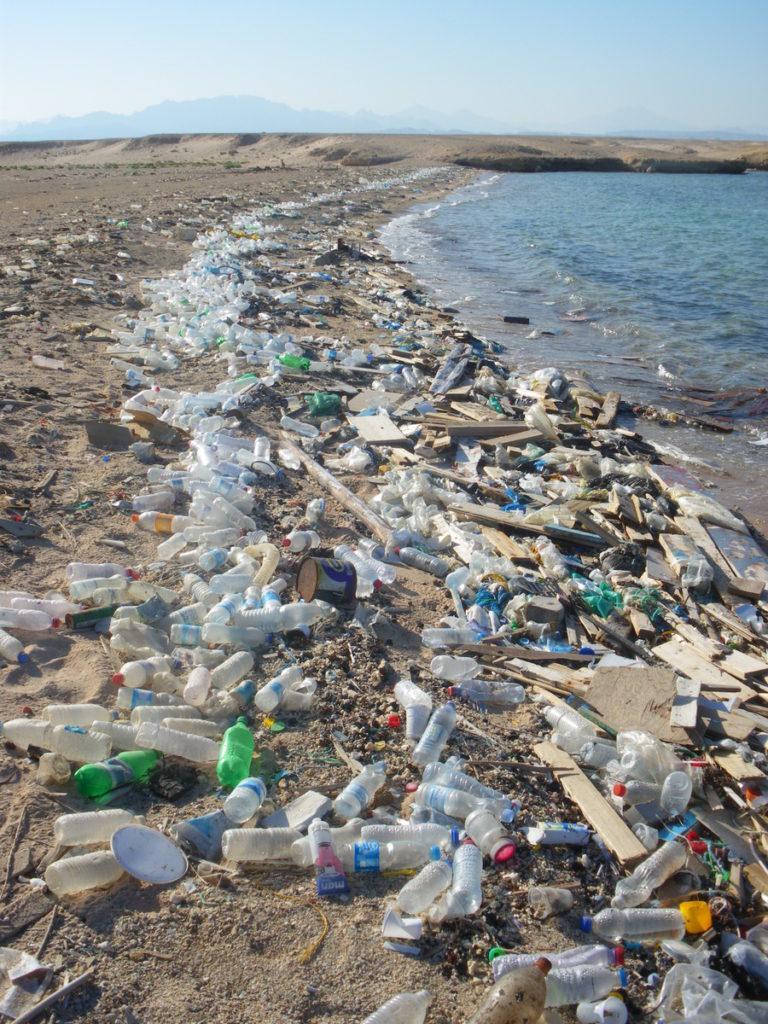 plage polluée par les plastiques